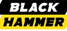 3a5d01443a3 Black Hammer Safety Boots